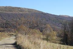 Het landschap van bergen Stock Foto's