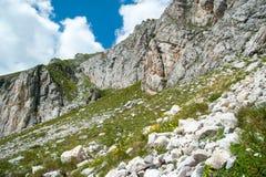 Het Landschap van bergpirin Stock Afbeelding