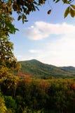 Het landschap van het bos aan de bergen en de zachte lichte zonneschijn aan de bergen in de middag, t, Koh yaoyai, Thailand stock foto
