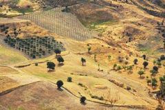 Het landschap van Calabrië Royalty-vrije Stock Afbeeldingen