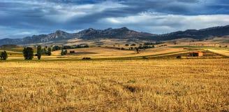 Het landschap van Castilla La Mancha Stock Afbeelding