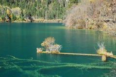 Het landschap van China Sichuan Jiuzhaigou Royalty-vrije Stock Fotografie