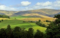 Het landschap van Clova van de nauwe vallei, Schotland Stock Afbeelding
