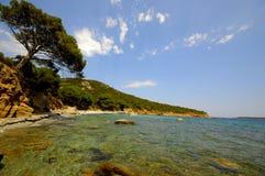 Het landschap van Corsica (Frankrijk) Stock Afbeelding