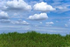 Het landschap van Cuntry Stock Afbeelding