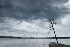 Het landschap van de aard op het meer in slecht weer Stock Foto's