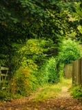 Het landschap van de aardzomer Plattelandsmening en rustieke poort Royalty-vrije Stock Foto's