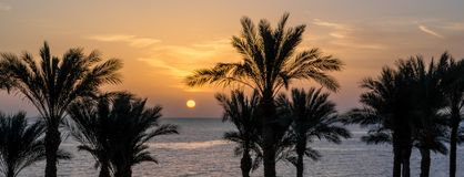 Het landschap van de avondzonsondergang op de achtergrond van het silhouet van palmen en het Rode Overzees met de hemel en wolken stock foto's