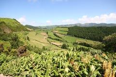 Het Landschap van de Azoren Stock Afbeelding