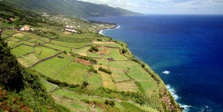 Het Landschap van de Azoren Royalty-vrije Stock Afbeeldingen