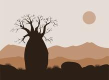 Het landschap van de baobabboom met bergenachtergrond Baobabsilhouet Afrikaanse zonsopgang Royalty-vrije Stock Fotografie