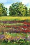 Het Landschap van de beeld` Zomer met de Tot bloei komende Weide ` Het gemengde materiaal Stock Fotografie