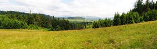 Het landschap van de berg. Stock Afbeeldingen