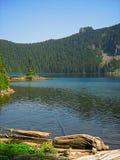 Het Landschap van de berg stock foto's