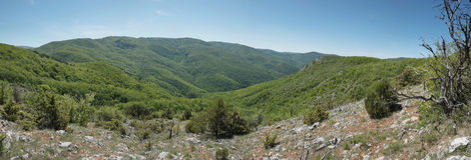 Het landschap van de berg in de canion van de Krim Stock Fotografie