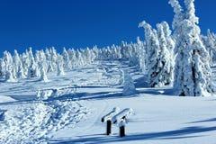 Het landschap van de berg in de winter Royalty-vrije Stock Afbeelding