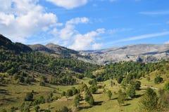 Het landschap van de berg in de zomer Royalty-vrije Stock Foto