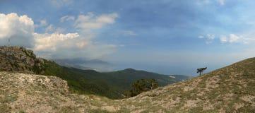 Het landschap van de berg met meningen van het overzees Stock Afbeeldingen