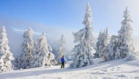 Het landschap van de berg Schladming oostenrijk Stock Afbeelding