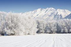 Het Landschap van de Berg van de winter royalty-vrije stock foto
