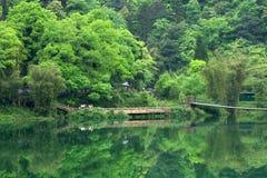 Het landschap van de berg van Ermei Royalty-vrije Stock Fotografie