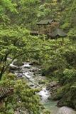 Het landschap van de berg van Ermei Stock Foto