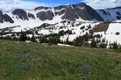 Het landschap van de berg van Wyoming stock afbeelding