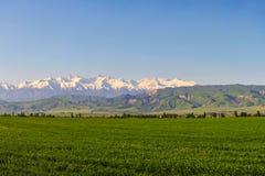 Het landschap van de berg Verse groene weiden bij zonsopgang in de lente, bergen die door de het toenemen zon worden aangestoken royalty-vrije stock foto