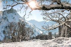 Het landschap van de bergenwinter met boom vertakt zich en diepe sneeuw op duidelijke zonnige dag Allgau, Beieren, Duitsland royalty-vrije stock foto