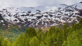 Het landschap van de bergenzomer in Noorwegen Royalty-vrije Stock Foto's