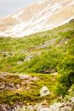 Het landschap van de bergenzomer in Noorwegen Stock Afbeeldingen
