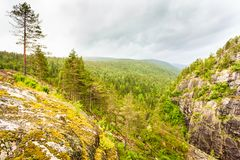 Het landschap van de bergenzomer in Noorwegen Royalty-vrije Stock Fotografie