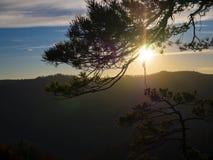 Het landschap van de bergherfst met kleurrijk bos stock afbeelding