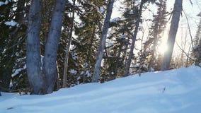 Het landschap van de bergvallei in zonnige de winterdag met de gevolgen van de lensegloed in langzame motie 1920x1080 stock videobeelden