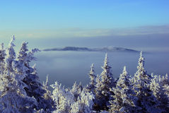 Het landschap van de bergwinter in de bergen Stock Foto