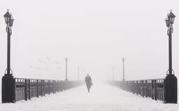 Het landschap van de brugstad in mistige sneeuw de winterdag Stock Afbeelding