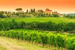 Het landschap van de chiantiwijngaard met steenhuis in Toscanië Royalty-vrije Stock Afbeeldingen