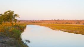 Het landschap van de Choberivier, mening van Caprivi-Strook op de grens van Namibië Botswana, Afrika Chobe Nationaal Park, beroem stock foto
