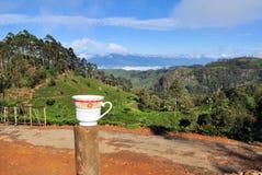 Het landschap van de de aanplantingsaard van de theekop in Sri Lanka Stock Afbeeldingen