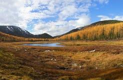 Het landschap van de de herfstberg Stock Fotografie