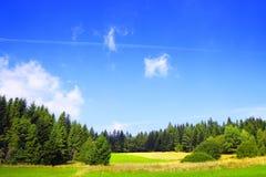 Het landschap van de de lenteaard Stock Foto's