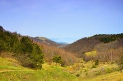 Het landschap van de de lenteberg. Stock Foto