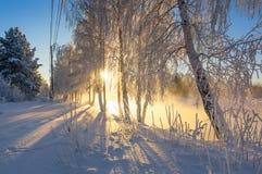 Het landschap van de de lenteochtend met mist en een bos, rivier, Rusland, Ural stock fotografie