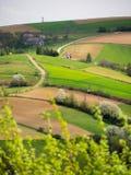 Het landschap van de de lentezonsondergang Stock Afbeelding