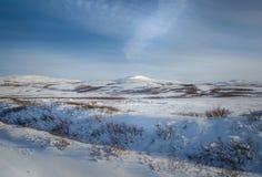 Het landschap van de de winterberg stock foto