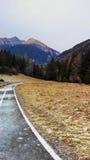 Het Landschap van de de winterberg: Bevroren Fietsweg Stock Afbeelding