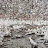 Het Landschap van de de winterkreek Stock Fotografie