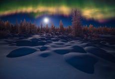 Het landschap van de de winternacht met bos, maan en noordelijk licht over het bos stock afbeeldingen
