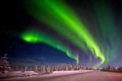 Het landschap van de de winternacht met bos, weg en polair licht over de bomen Stock Fotografie