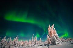 Het landschap van de de winternacht met bos, weg en polair licht over de bomen stock afbeeldingen